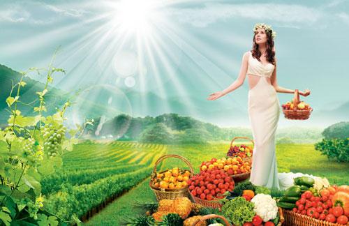 秋季养生食疗方养生常识:体内湿气重导致肥胖水肿夏日去湿九