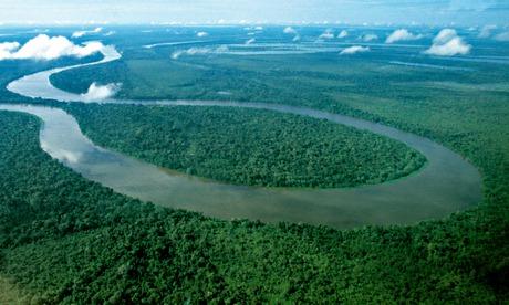 巴西建亚马逊观测塔监测气候变化影响