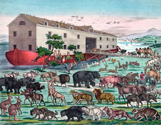 图释2:一位不知名画家笔下的诺亚方舟与大洪水景象,1870年由纽约穆勒公司印刷出版。(图片来源:Corbis) 据英国《卫报》报道,科学家近日警告说,即便以最保守的物种灭绝速度来估算,现代世界也正在经历着物种的第六次大灭绝。他们认为,20世纪物种灭绝的速度可达人类活动出现前的100倍。 许多自然资源保护者已多次警告,由于人类活动破坏甚至摧毁了生物栖息地,一场物种大灭绝正在发生,而上一次类似的灭绝事件终结了恐龙时代。 这项发表在6月19日的《科学进展(Science Advances)》期刊上的研究显示