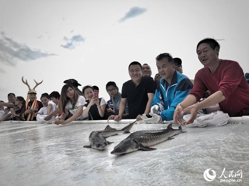 图为正在放流大鱼的志愿者。