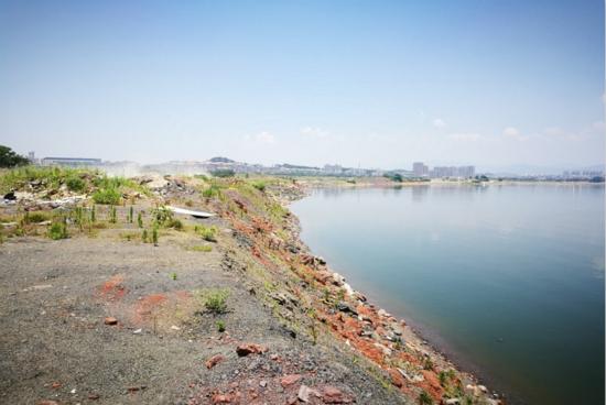 非法填湖,江西武宁县牺牲环境要增长