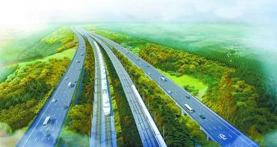 北京新机场周边今年增万亩林海