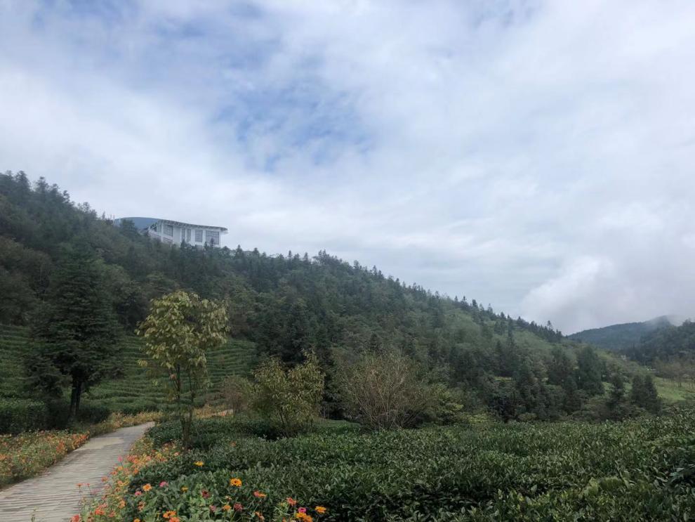 """踐行""""兩山理論""""的示范地 白馬山打造綠色生態園林"""