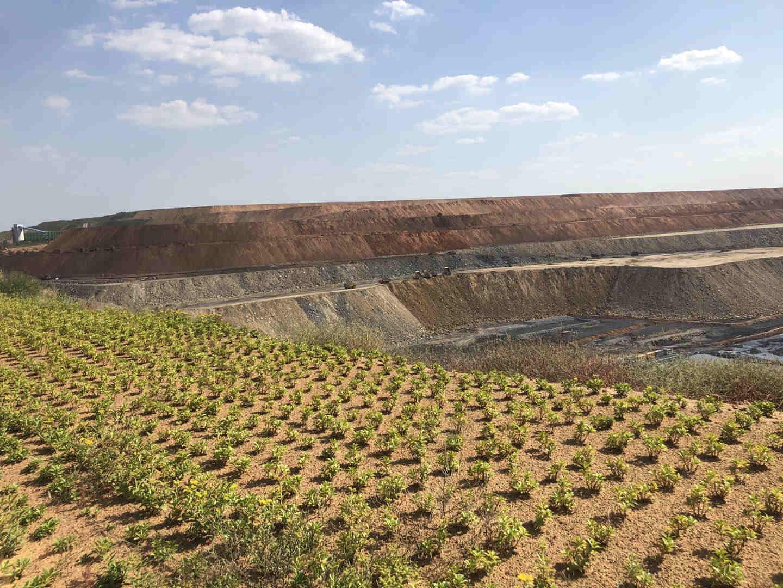 奏响新时代治水强音 让黄河造福人民