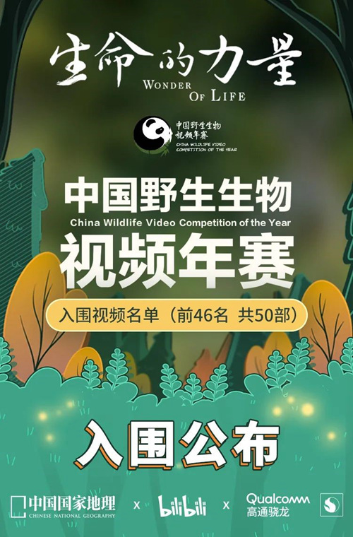 首届中国野生生物视频年赛入围作品名单公布
