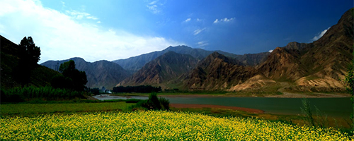 石羊河流域百试:走出高质量节水发展新路