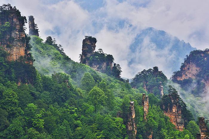 """国家林草局发布""""十三五""""时期全国森林旅行开展十件大事"""