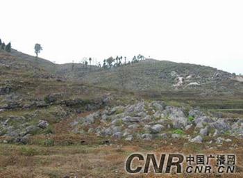贵州:石漠化地区的生态之路 121224
