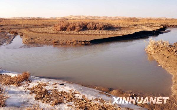 赵戈/在罗布泊地区三河口冲积扇上,若羌河仍在顽强的流淌着,远处...