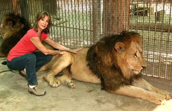 组图:世界上最危险的动物园