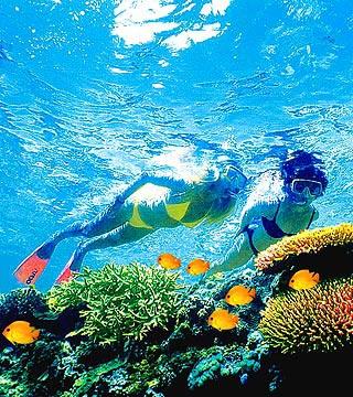 7、大堡礁宁静心潜