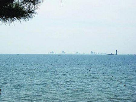"""""""昨天(9日)中午,秦皇岛市民姚先生与友人在北戴河海滨游玩时,无意中向"""