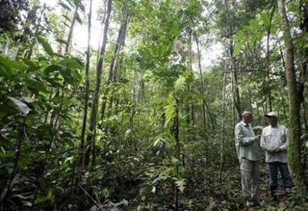 图:巴西研究人员在亚马逊地区进行科研考察